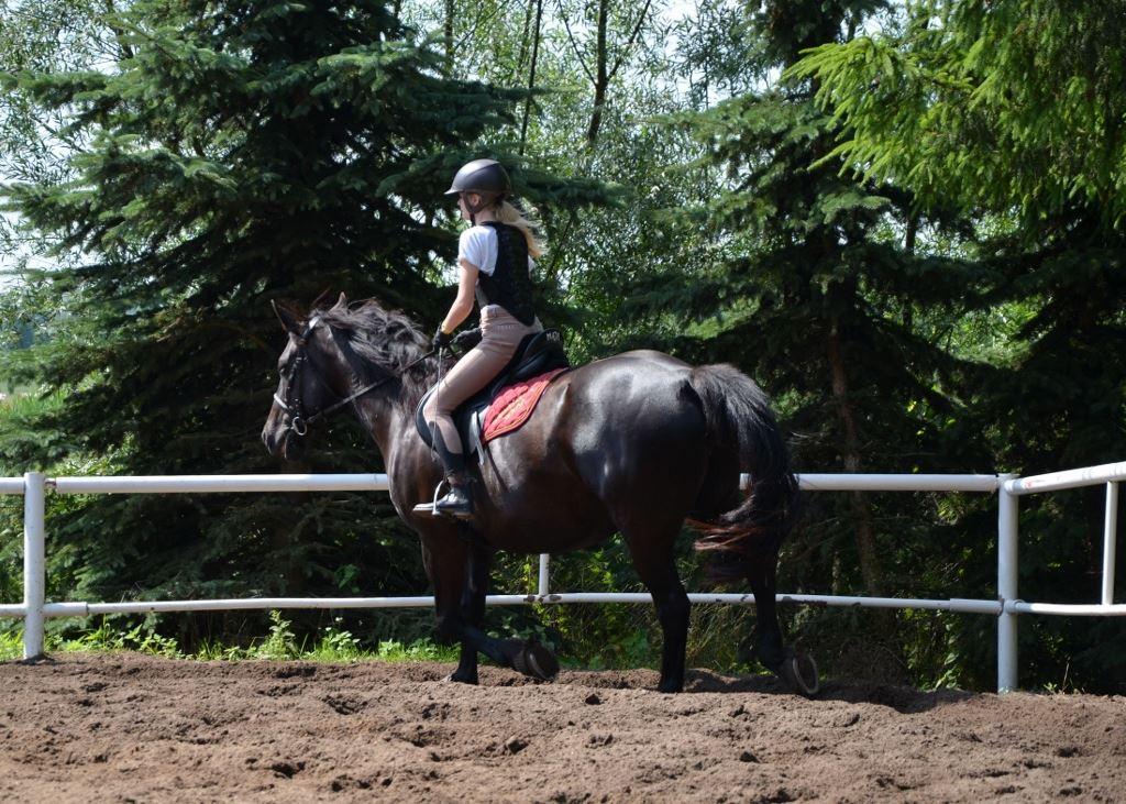 12 Jazdy konne Farma Jantar (33) sml