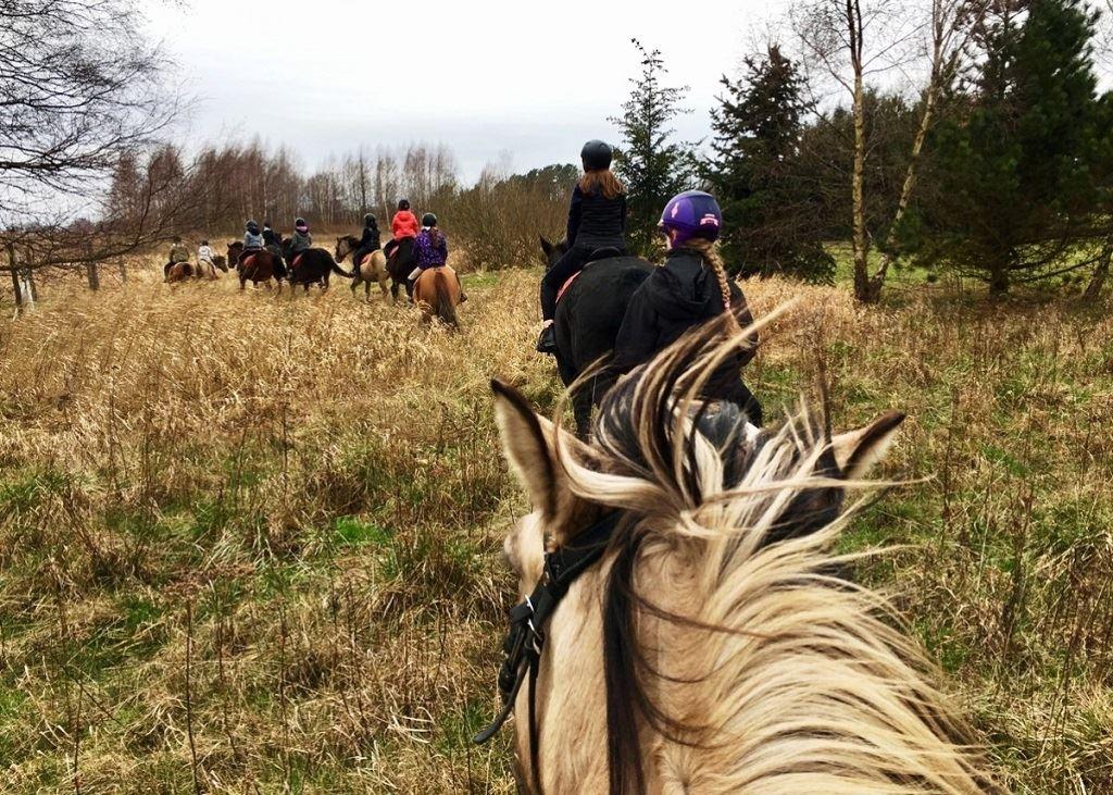 Jazdy w terenie Stadnina Farma Jantar (2) sml