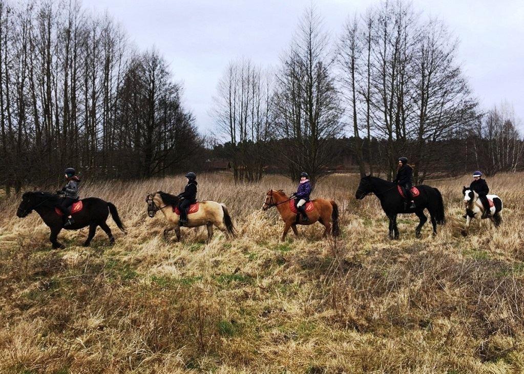 Jazdy w terenie Stadnina Farma Jantar sml